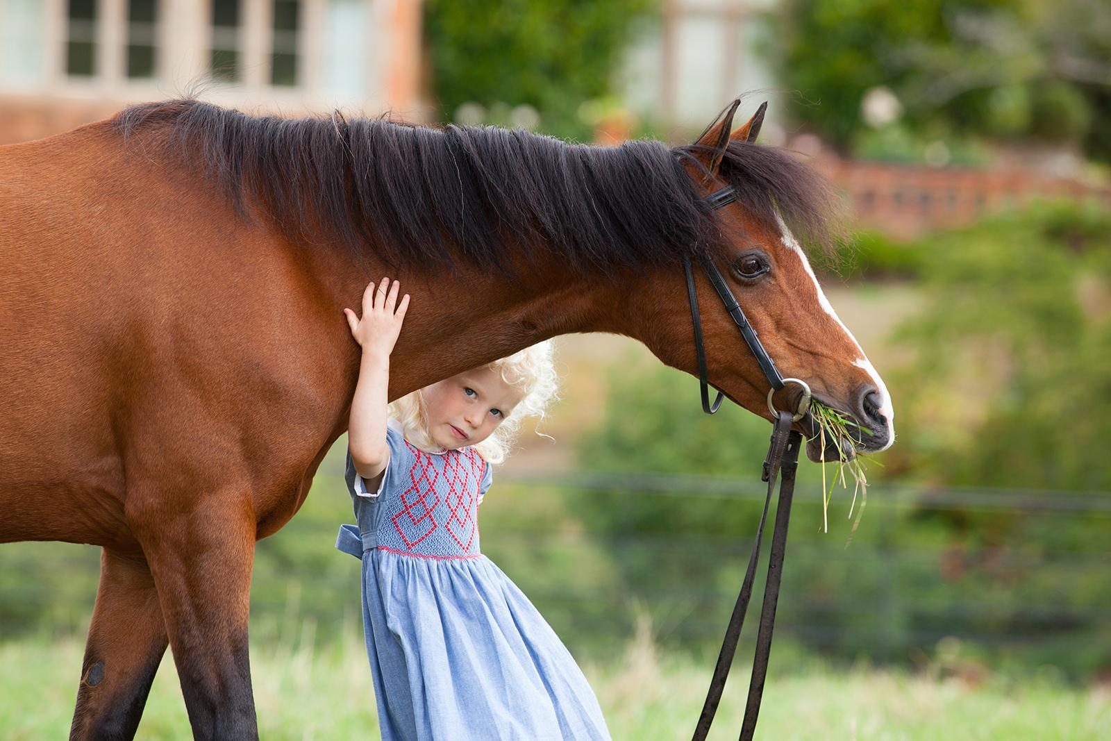 Jane Rayner Photography: Equine Portraiture