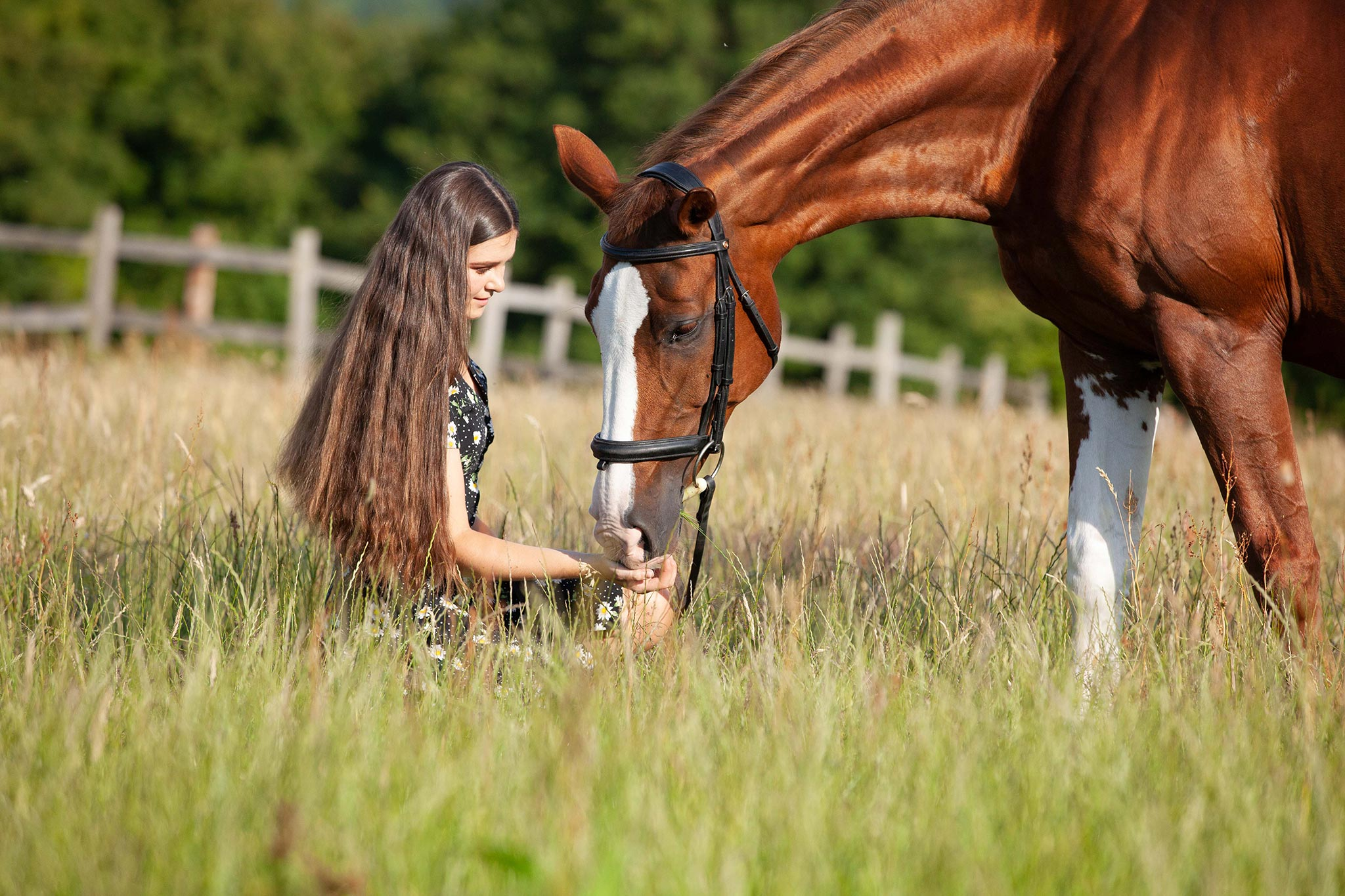 A girl in a field with long brown hair and a horse