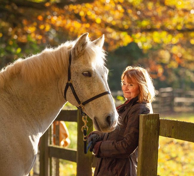 Jane Rayner: horse portrait photoshoot